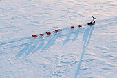 Aerial view of Alan Stevens and team on the Yukon River at sunrise and nearing Galena during Iditarod 2015