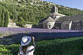 Lavendel vor dem Kloster Abbaye de Senanque, bei Gordes, Vaucluse, Provence-Alpes-Côte d'Azur, Frankreich