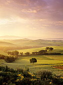 Sunrise at Val d'Orcia, near San Quirico, Val d'Orcia Orcia Valley, UNESCO World Heritage Site, Siena Province, Tuscany, Italy, Europe
