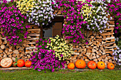 Autumn decoration at a farmhouse in Wieden, Black Forest, Baden-Wuerttemberg, Germany