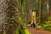 "Wood scupture ""Merlin"" in Zauberwald nature reserve Taubenmoos, near Bernau, Black Forest, Baden-Wuerttemberg, Germany"