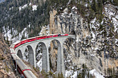 Bernina Express passes over Landwasser Viaduct, UNESCO World Heritage Site, and snowy woods, Filisur, Canton of Grisons Graubunden, Switzerland, Europe