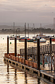 Pier and yachts, Monterey, California, United States of America, North America