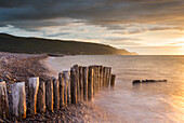 Weathered wooden posts on Bossington Beach, Exmoor National Park, Somerset, England, United Kingdom, Europe