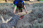 A little boy drags a log of wood over the ground.
