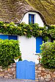 Thatched house with blue windows, Ile de Fédrun, Bretagne, France, Europe