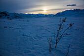 sunset in wintertime at Brooks Range, North Slope Borough, Alaska, USA