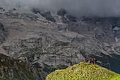 Mountainbiker vor der Kulisse des Marmoladagletschers, Trentino-Südtirol, Italien