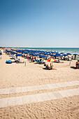 Sunshade and sunbeds on the beach, Camping, Marina di Venezia, Punta Sabbioni, Venice, Italy, Europe, Mediterranean Sea