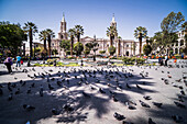 Basilica Cathedral of Arequipa Basilica Catedral, Plaza de Armas, UNESCO World Heritage Site, Arequipa, Peru, South America