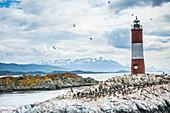 Les Eclaireurs Lighthouse and cormorant colony on an island in the Beagle Channel, Ushuaia, Tierra Del Fuego, Argentina, South America