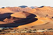 Sand dunes in remote desert