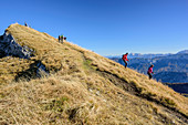 Several persons hiking at Sonntagshorn, Sonntagshorn, Chiemgau Alps, Salzburg, Austria