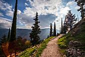 Walking path on Mount Parnassus, Delphi, Greece