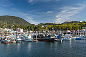 Sailboats and fishing boats docked in Ketchikan's harbor along Creek Street, Southeast Alaska, Spring