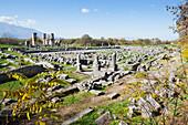 Ruins of an agora, Philippi, Greece