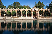 Chamber of Abraham, wall reflected in the tranquil water of a lake, Sanliurfa, Turkey