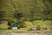 Hamlet near Vik, South Region Sudurland, Iceland, Polar Regions