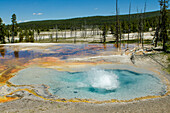 Firehole Spring, Yellowstone National Park, UNESCO World Heritage Site, Wyoming, United States of America, North America