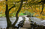 Autumnal colours above Tarr Steps in Exmoor National Park, Somerset, England, United Kingdom, Europe