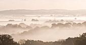 Mist covered countryside at dawn, Cheriton Bishop, Devon, England, United Kingdom, Europe
