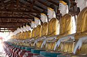 Line of seated Buddhas at the Maha Bodhi Ta Htaung monastery, Monywa township, Sagaing Division, Myanmar Burma, Asia