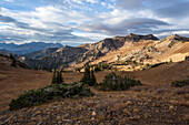 Mineral Basin at Snowbird Resort is bathed in early morning light on a crisp fall day in the Wasatch Mountains.