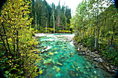 The clear water of a rushing river in Revelstoke, British Columbia. (motion blur)