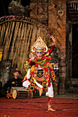 Balinese Trance & Paradise Dancer.