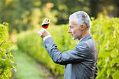 Caucasian man examining glass of wine in vineyard