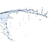 Water splashing on white background