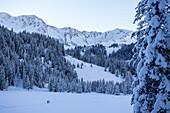 Hike through the winterly snowcovered Kleinwalser valley in Vorarlberg at the blue hour, Vorarlberg, Austria