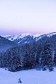 Winterly snowcovered landscape in the Kleinwalser valley in Vorarlberg at the blue hour, Vorarlberg, Austria