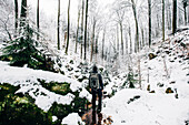 Hiker standing in the snow-covered Palatinate Forest, Anweiler, Palatinate Forest, Rhineland-Palatinate, Germany