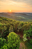 Sunset in summer on top of the Staeffelsberg, Palatinate Forest, Rhineland-Palatinate, Germany