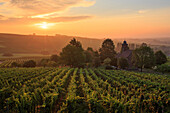 Sunrise over Nikolauskapelle next to Klingenmuenster, Southern wine route, Rhineland-Palatinate, Germany