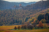 Autumn in the Palatinate Forest, view of castle Landeck and Nikolauskapelle at Klingemuenster, Southern wine route, Palatinate Forest, Rhineland-Palatinate, Germany