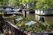 houseboat with a garden on its roof, amsterdam, holland