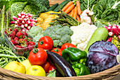 gathering of fruit and vegetables (basket), farm produce from the lands of the eure-et-loir, les jardins d'imbermais, eure-et-loir (28), france eure-et-loir (28), france