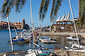 the marina and the notre-dame-des-anges church, town of collioure, (66) pyrenees-orientales, languedoc-roussillon, france
