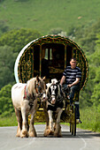 Horse drawn caravans heading towards the horse fair at Appleby in Westmorland Cumbria, England