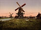 Two Windmills, Holland, Photochrome Print, circa 1901