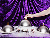 Cropped image of person lifting domed tray