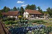 Vegetable garden and buildings at Fränkisches Freiluftmuseum Fladungen open air museum