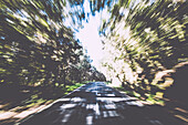 Tunnel vision of a road across a forest road