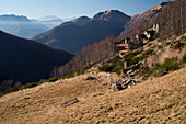 Alp houses of Rienza, Val Verzasca, Lepontine Alps, canton of Ticino, Switzerland