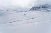 A female skitourer in the valley named Mánárdalur near Siglufjörður, Tröllaskagi or in English Troll Peninsula, Iceland