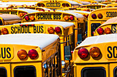 Typical American school buses in the bus depot, New York City , New York , USA