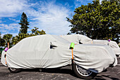 Cars on a parking lot covered by the owners for overwintering, with palms in the background, Sanibel, Florida, USA