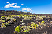 Scenery at the south point of the island in the volcano area, Fuencaliente, La Palma, Canary islands, Spain